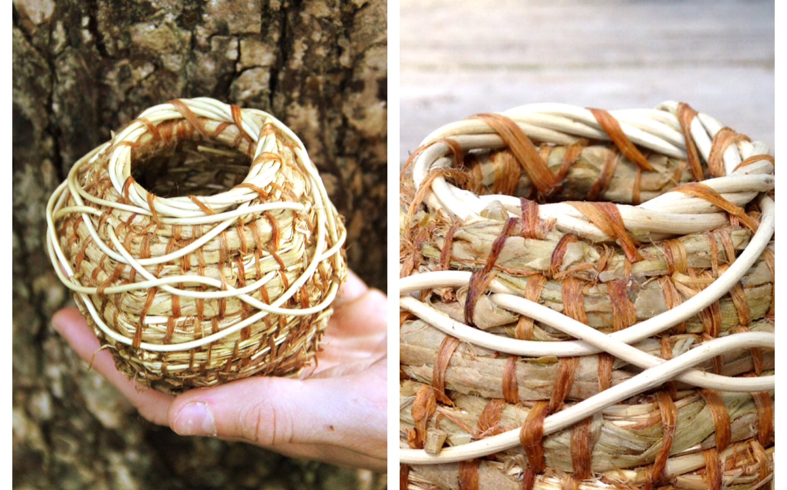 How To Weave A Basket Out Of Cattails : Learning to weave a basket